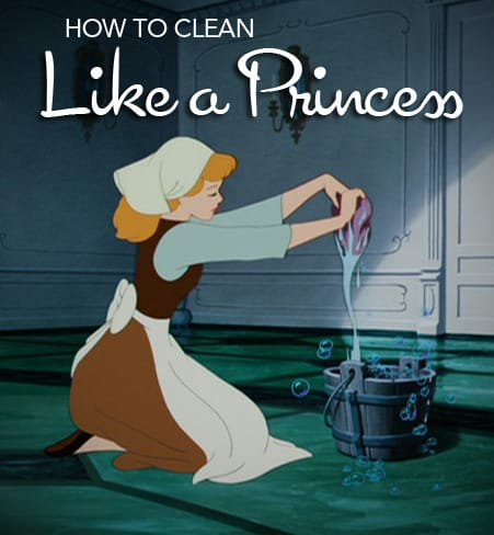 How To Clean Your Home Like A Princess The Maids Blog