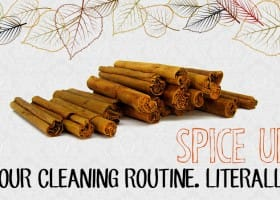 Spice Up Your Cleaning Routine. Literally.
