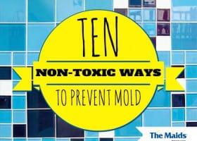 Ten Non-Toxic Ways to Prevent Mold