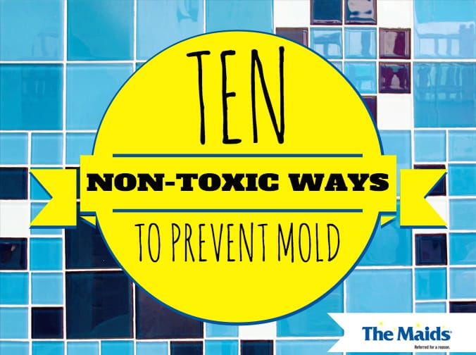 Ten Non-Toxic Ways to Prevent Mold