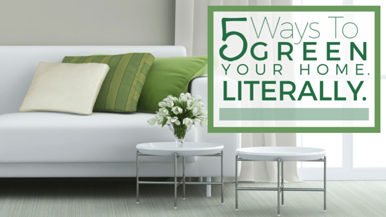 5 Ways To Green Your Home. Literally.