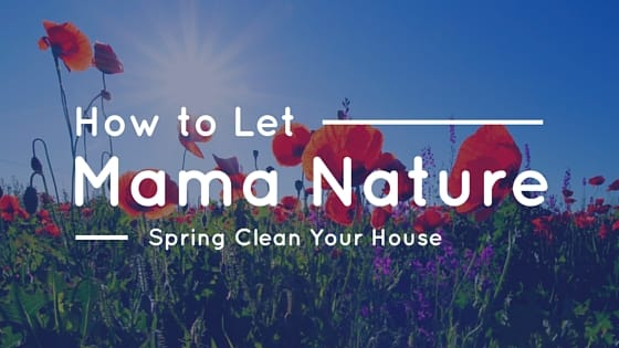 How to Let Mama Nature Spring Clean Your House