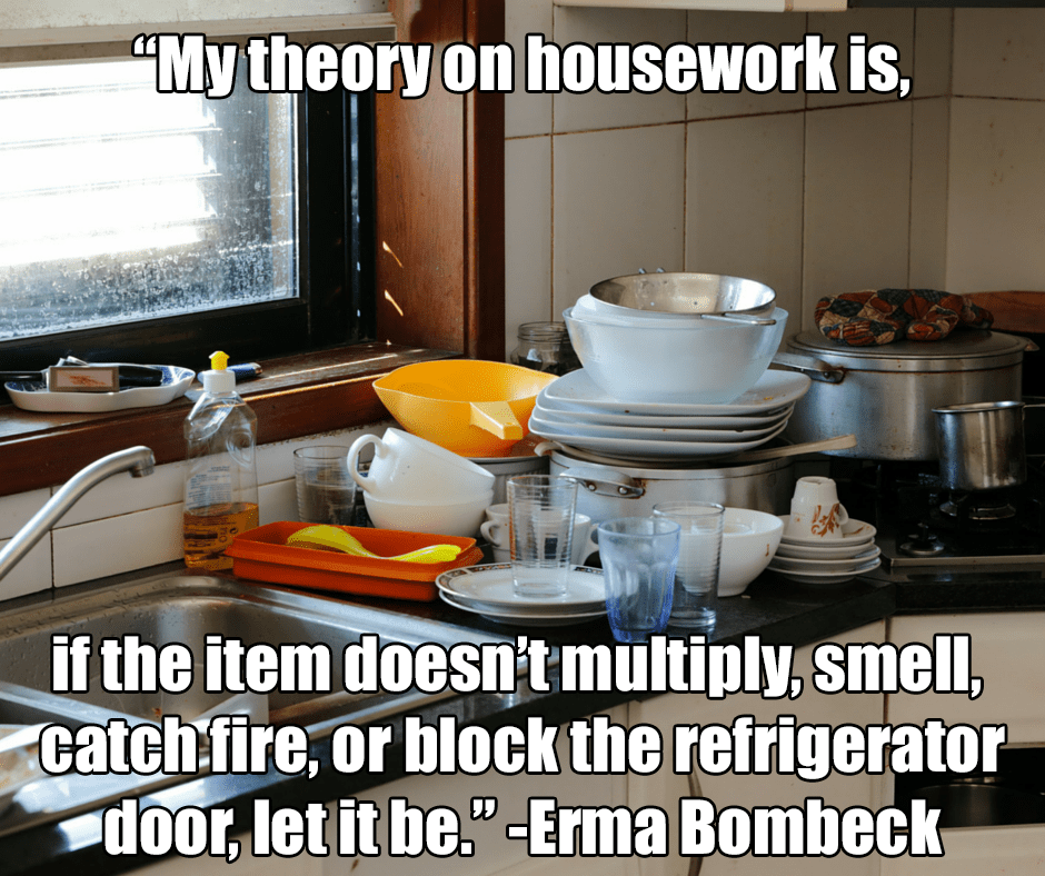 theory on housecleaning meme