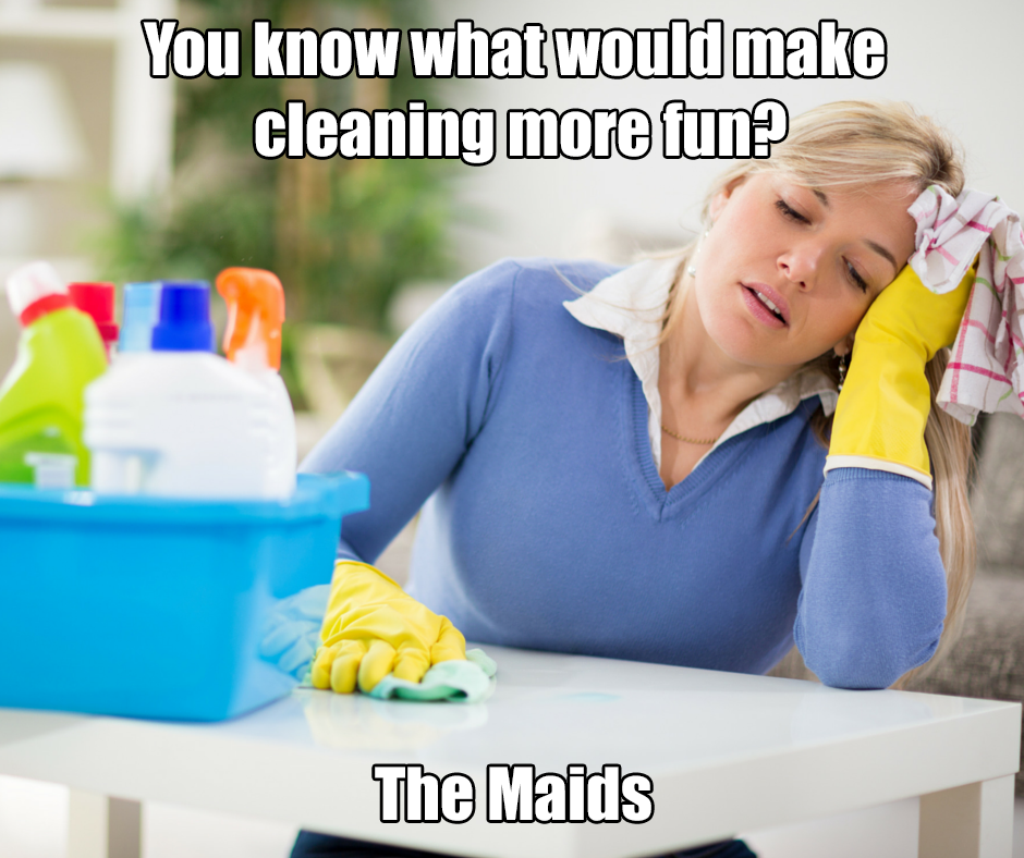 house cleaning more fun