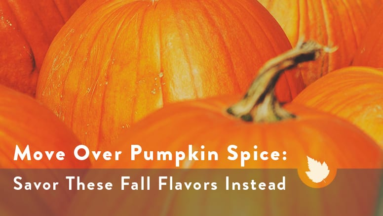 pumpkinspiceblogimage