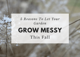 5 Reasons To Let Your Garden Grow Messy This Fall