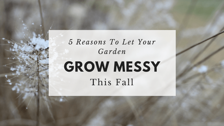 messy-garden-blog