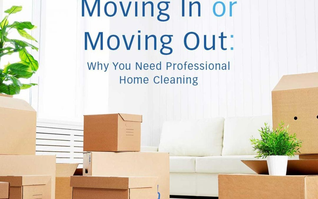 Why You Should Hire Move Out Cleaners