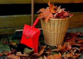 5 Fall House Maintenance Tips You Shouldn't Forget About