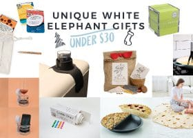 Unique White Elephant Gifts Under $30