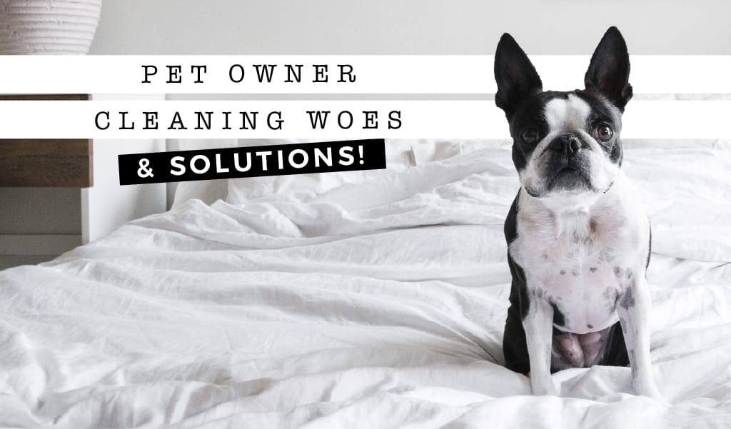 Pet Owner Cleaning Woes (& Solutions!)