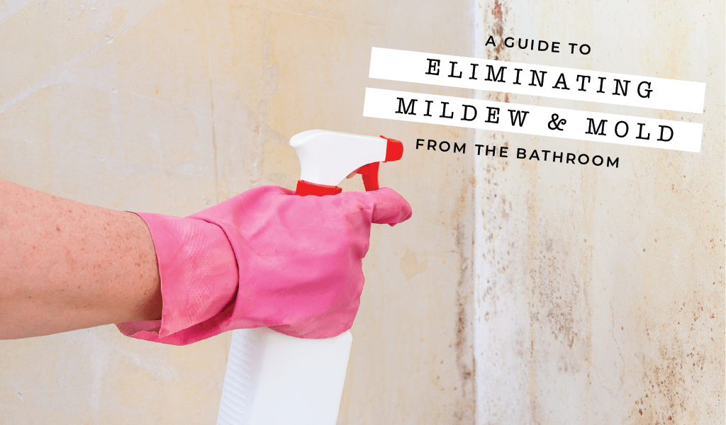 A Guide to Eliminating Mold and Mildew from the Bathroom