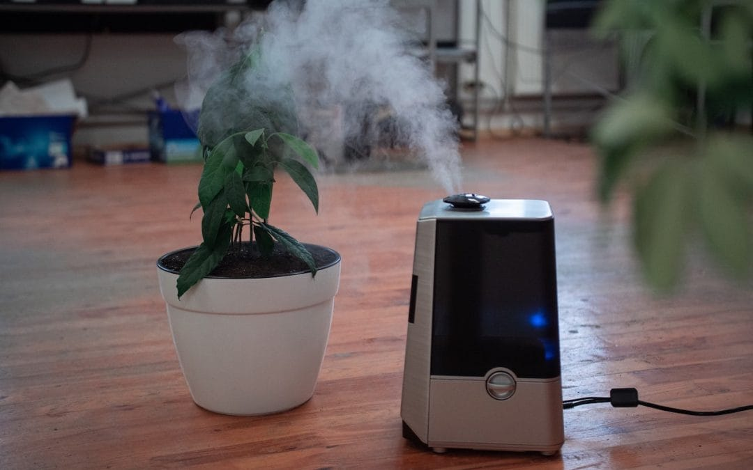 How to Clean and Disinfect A Humidifier