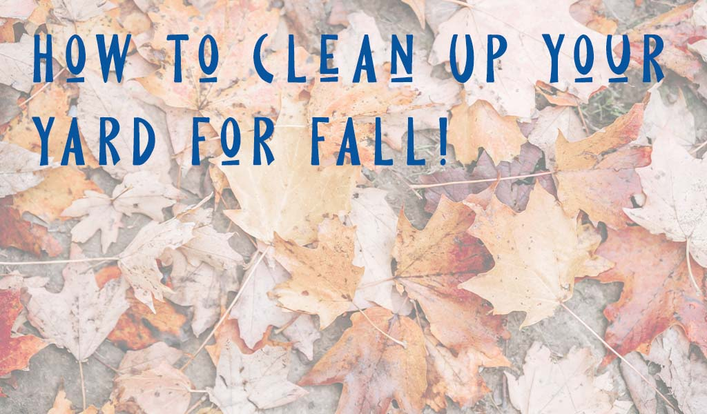 How to Clean-Up Your Yard for Fall