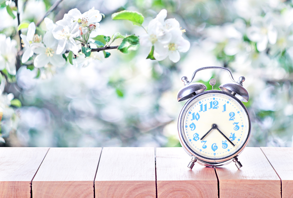 Featured Image for It's Time to Make a Switch! A Spring Cleaning Guide on What to Change with the Season